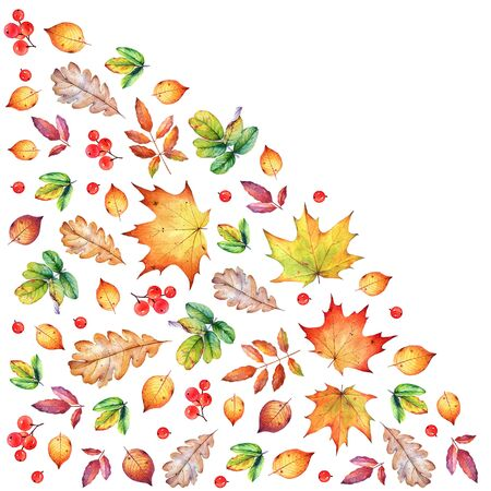 Corner composition with autumn leaves and berries.