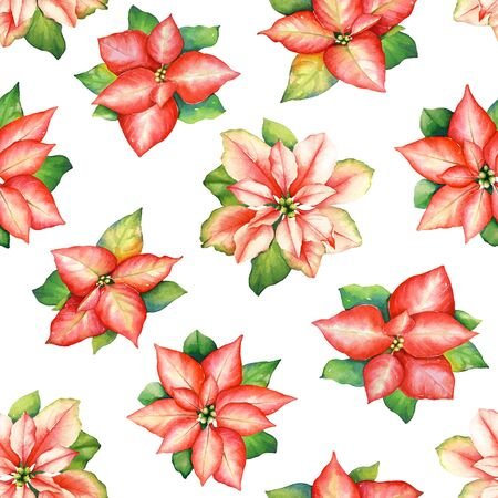 Watercolor seamless pattern with red poinsettia flowers with green leaves isolated on white background