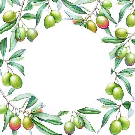 Card template with watercolor olive tree branches with olives and green leaves. Imagens