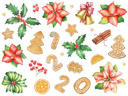 Watercolor red  poinsettia flowers, ginger cookies, sweets and holly branches and spices. Collection of elements for new year and christmas design.