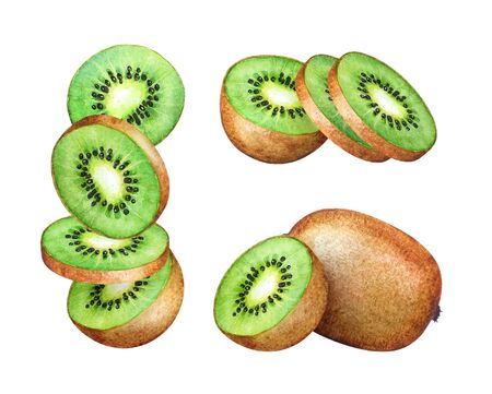 Watercolor kiwi fruit and its parts isolated on white background Imagens