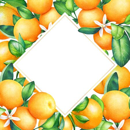 Frame with watercolor orange tree branches with fruits and green leaves. Standard-Bild