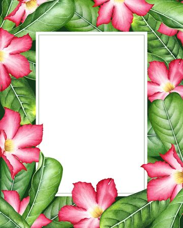 Frame with watercolor tropical pink flowers with leaves.