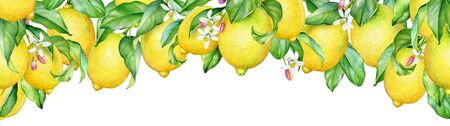 Decorative design with watercolor branches of lemon tree with ripe fruits and flowers.