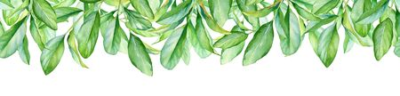 Watercolor border with green leaves isolated on white background.