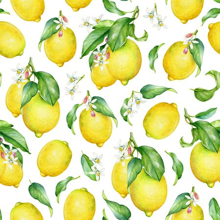 Seamless pattern with watercolor lemon tree branches Standard-Bild