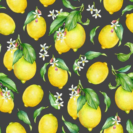 Seamless pattern with watercolor lemon fruits with green leaves and flowers on dark grey background Standard-Bild