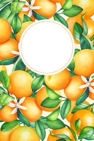 Frame with watercolor orange tree branches with fruits, leaves and flowers.