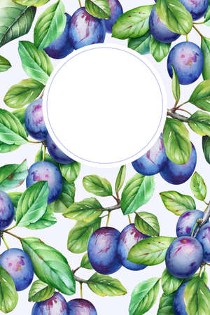 Frame with watercolor plum tree branches with fruits and leaves. Botany card template.