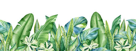 Seamless pattern with watercolor tropical plants isolated on white background
