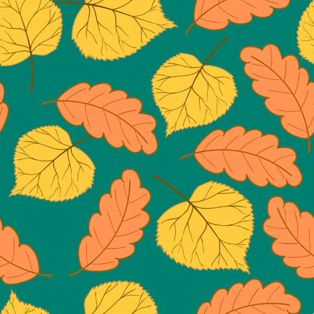 Autumn leaves on colorful background.