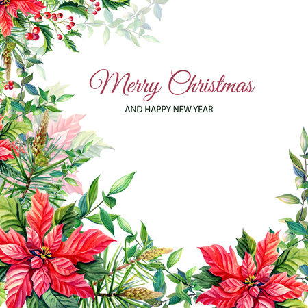 Watercolor Merry Christmas Frame with Red poinsettia flowers,Holly,leaves,berries,pine,spruce,green twigs