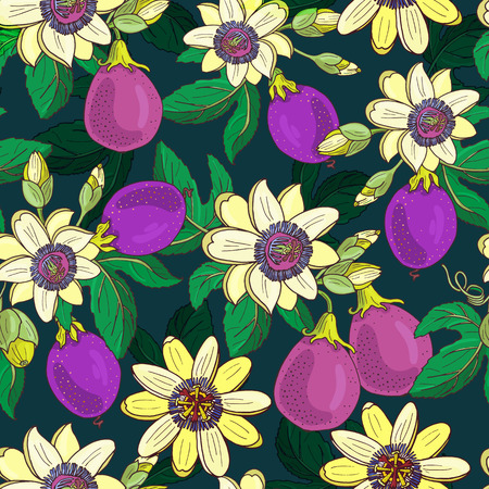 Passionflower passiflora,passion purple fruit on a dark background.Floral seamless pattern.Big bright exotic Maracuja flowers,bud and leaf.Summer vector illustration for print textile,fabric.