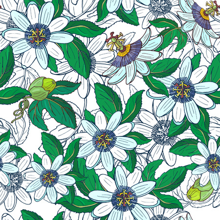 Passionflower passiflora,passionfruit on a white background.Floral seamless pattern with big bright exotic flowers,bud and leaf.Summer vector illustration for print textile,fabric,wrapping paper.