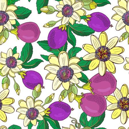 Passiflore de passiflore, fruit violet de la passion sur fond blanc. Motif floral sans couture. Grandes fleurs exotiques lumineuses de Maracuja, bourgeons et feuilles. Illustration vectorielle d'été pour textile imprimé, tissu. Vecteurs