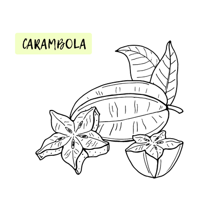 Carambola or Starfruit. Coloring book for kids. Tropical fruit and pieces on white background.Summer vector illustration.Exotic natural food.