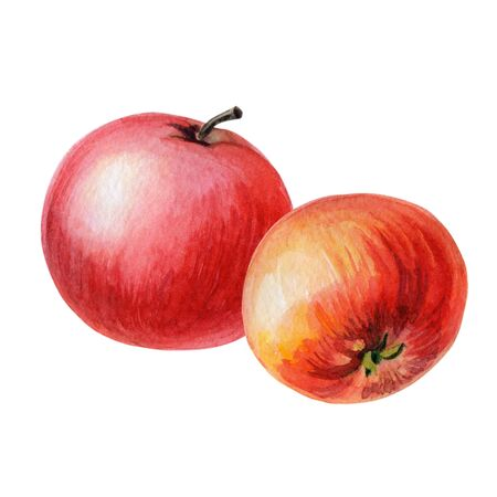 Red apples with on a white 스톡 콘텐츠