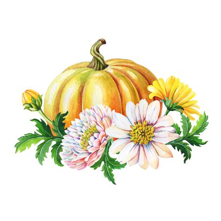 Orange pumpkin,chrysanthemums. Watercolor illustration with flower,green leaves on white background. Autumn harvest.