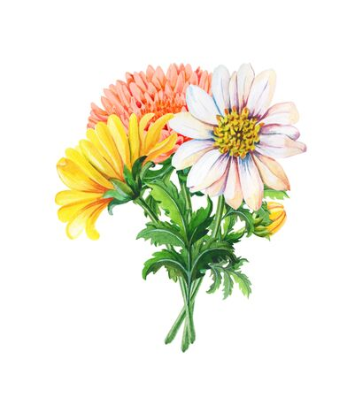 Watercolor Bouquet of chrysanthemums on a white background.Summer,autumn floral illustration of yellow flowers