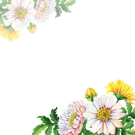 Watercolor Greeting card, invitation with chrysanthemums on a white background.Summer,autumn floral