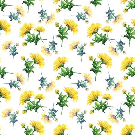 Watercolor chrysanthemums on a white background.Abstract seamless pattern of yellow flowers Reklamní fotografie - 135448625