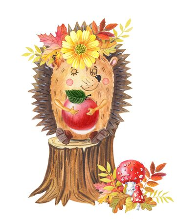 Watercolor hedgehog with red apple on a tree stump.One cartoon forest animal on white Imagens
