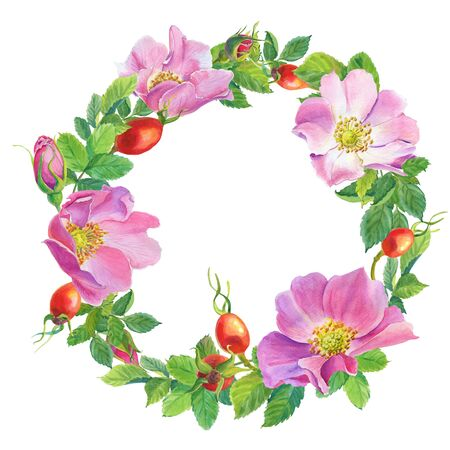 Rose Hip.wreath.Dog-rose.Greeting card with watercolor wild briar flowers on a white background. illustration for scrapbooking, Invitations, books and journals, decoupage,cards for weddings, birthday.