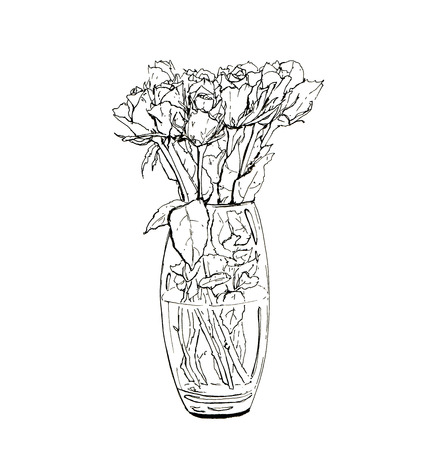 hand drawn graphic bouquet of roses on white background