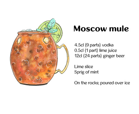 hand drawn watercolor cocktail Moscow mule Vodka buck on white background