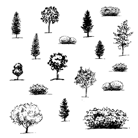 hand drawn seamless pattern with graphic trees on white background Stock Photo