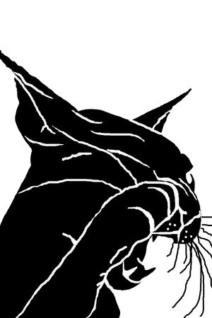 Silhouette of the head of a cat, a black silhouette, white background, pet Stock Photo - 6520140