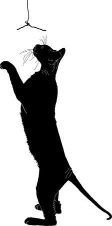 cat stretching: silhouette of a cat Illustration