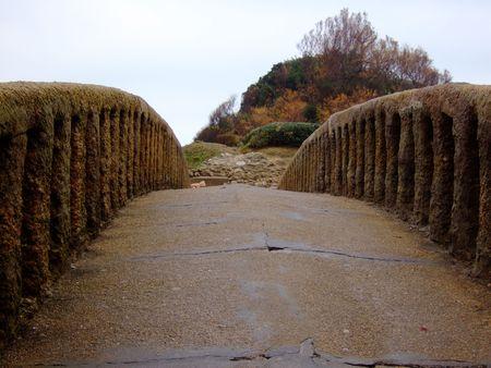 The  old bridge photo
