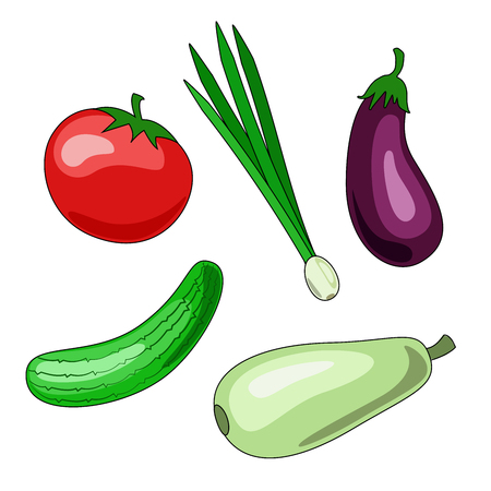 Set of vegetable icons on white isolated background. Vector illustrations of tomato, cucumber, zucchini, eggplant, green onion.