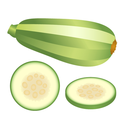 Light green zucchini and its pieces isolated on white background. Vector illustration.