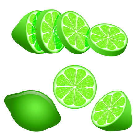 Set of green lime slices isolated on white background used as a design element. Vector illustration.