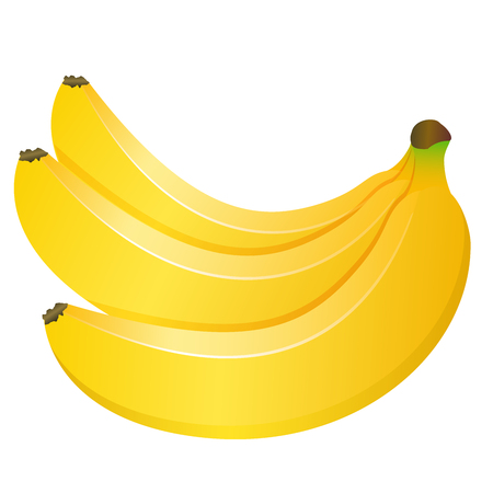 Bunch of three bananas isolated on white background. Vector illustration.