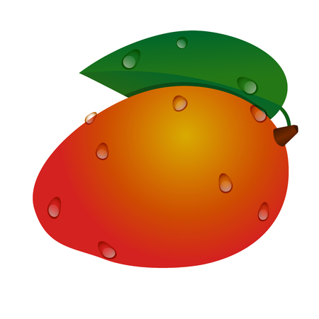 Yellow-red tropical mango fruit with green leaf and drops