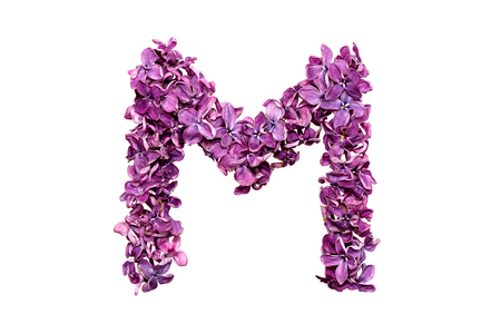 qwerty: Flower letter lilac or purple color isolated on white background. Letter M