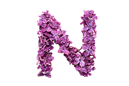 qwerty: Flower letter lilac or purple color isolated on white background. Letter N Stock Photo