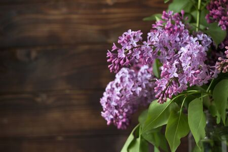 Bouquet of lilac on a background of brown wooden background. Spring beautiful lilac flowers, background. Place for text