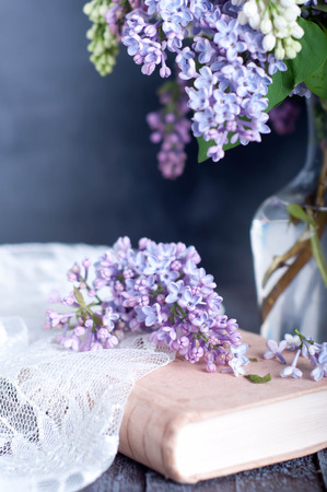 Bouquet of purple lilac spring flowers with an open book and vintage hazy editing Standard-Bild