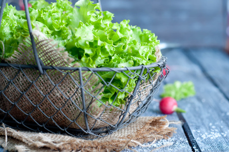romaine: Fresh green salad with spinach,arugula,romaine and lettuce Stock Photo