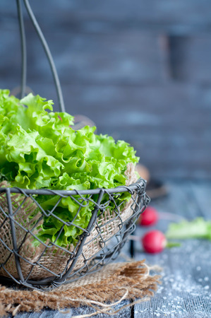 rocket lettuce: Fresh green salad with spinach,arugula,romaine and lettuce Stock Photo