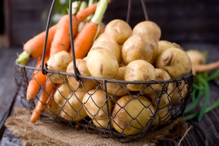russet: young potatoes and carrots in basket