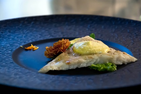 coalfish: Thai Curry with Halibut Filet on Plate Stock Photo