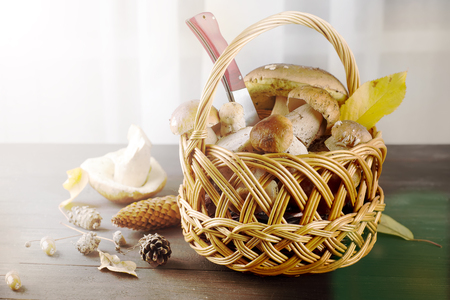 Small basket with autumn mushrooms