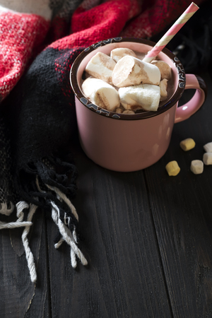 Enamel cup of hot cocoa with marshmallows Stock Photo