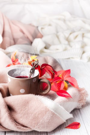 Autumn concept. A cup of healthy tea in yellow red leaves with beige scarf on white wooden background, Фото со стока