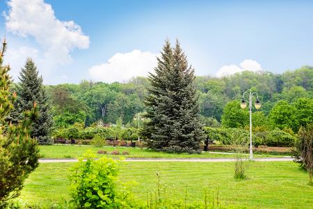 Bellissimo parco verde Teofania.